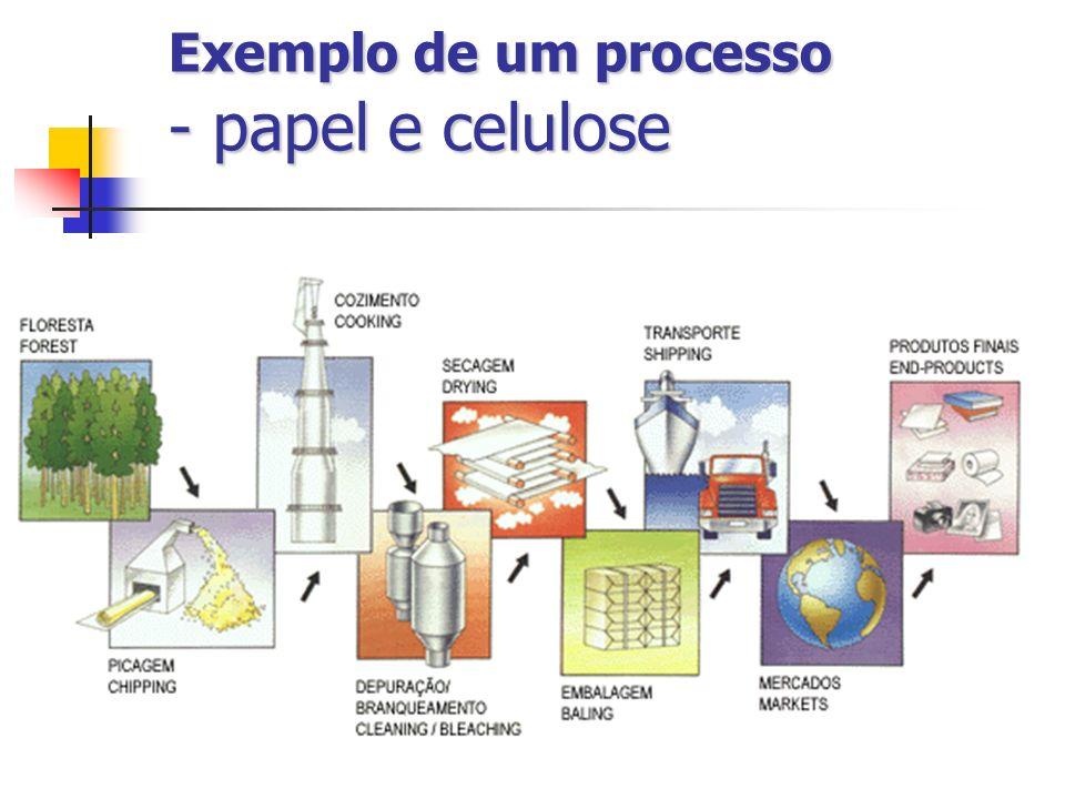 Exemplo de um processo - papel e celulose