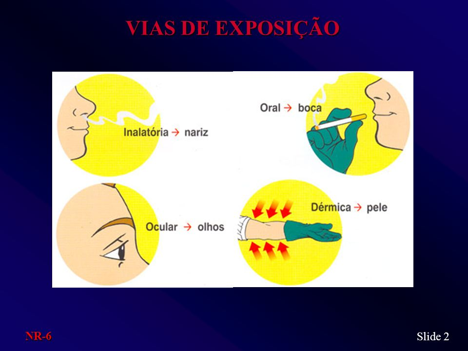 VIAS DE EXPOSIÇÃO NR-6 Slide 2