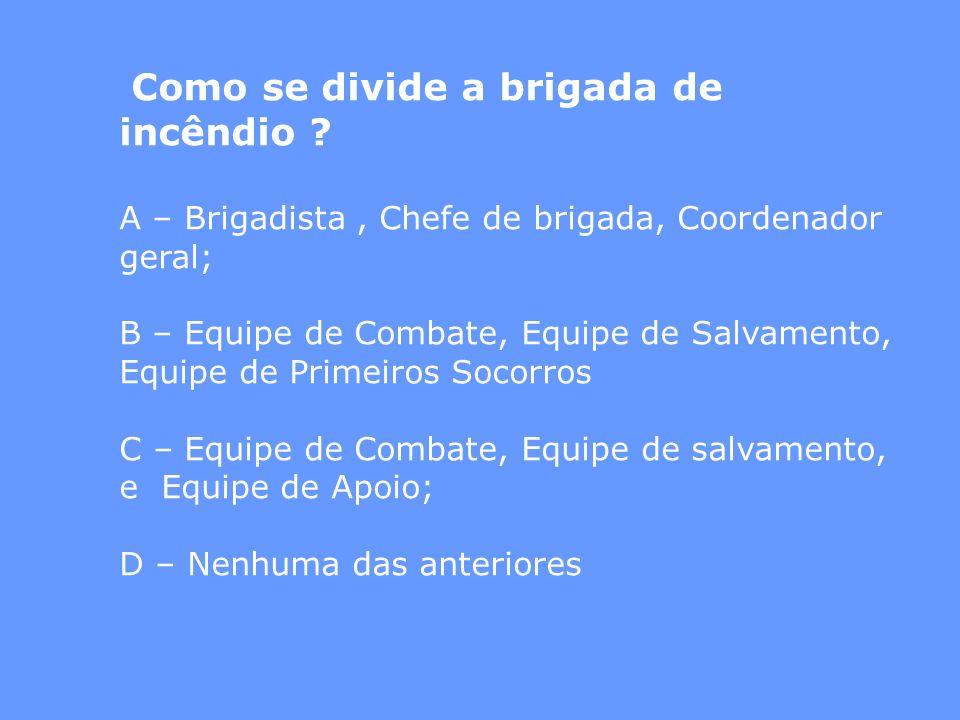 A – Brigadista , Chefe de brigada, Coordenador geral;