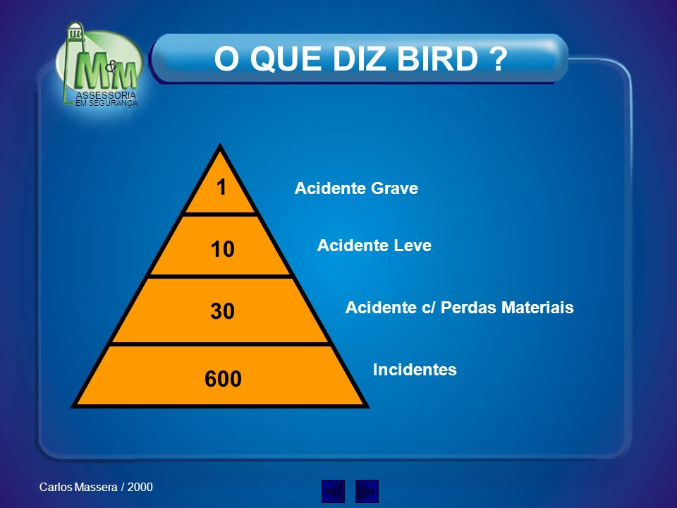 O QUE DIZ BIRD 1 10 30 600 Acidente Grave Acidente Leve