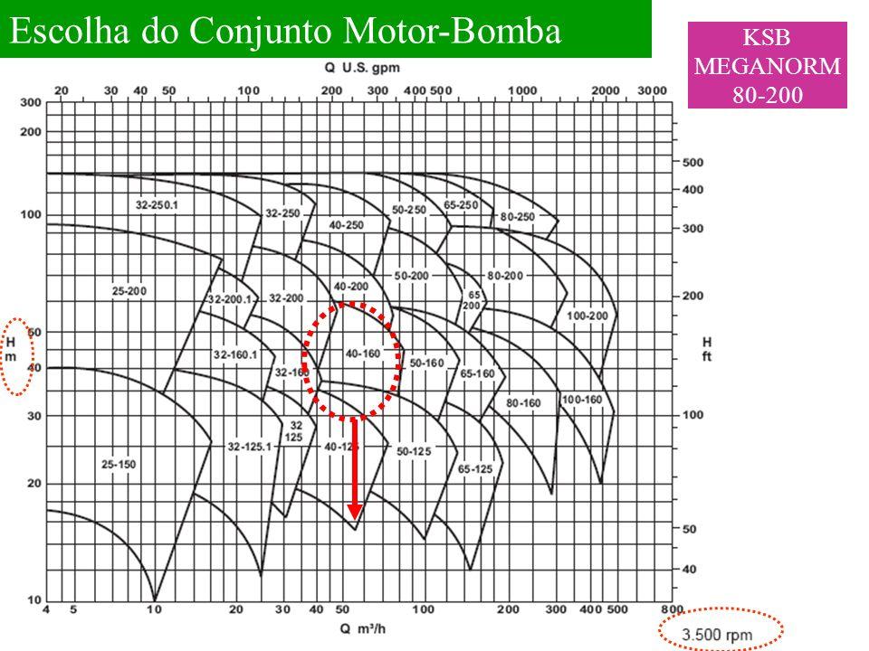 Escolha do Conjunto Motor-Bomba