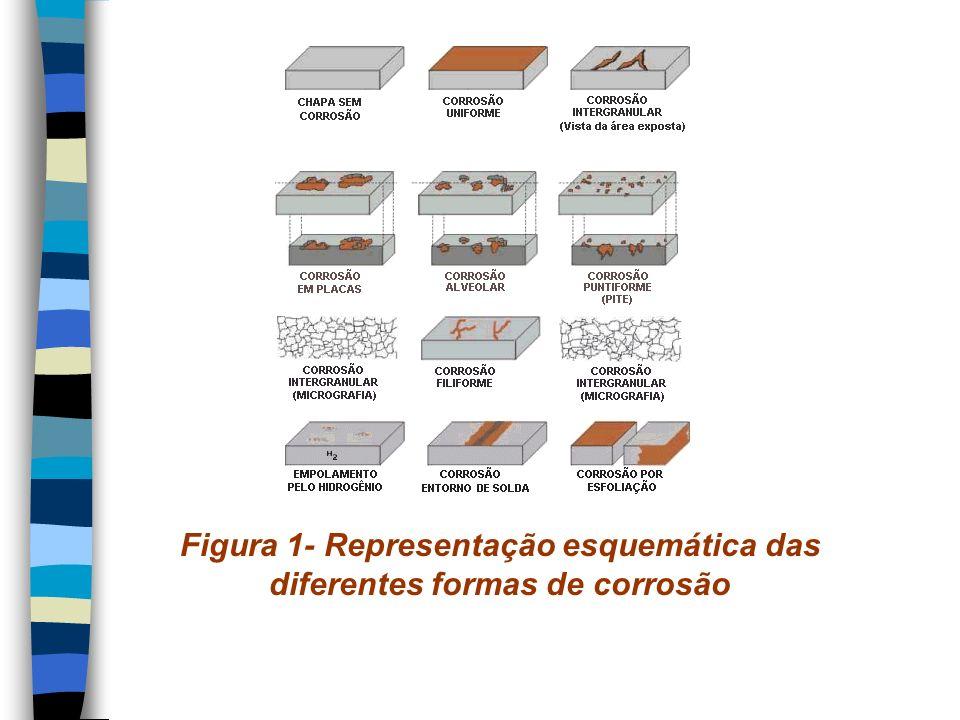 Figura 1- Representação esquemática das diferentes formas de corrosão