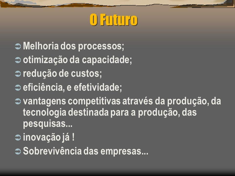 O Futuro Melhoria dos processos; otimização da capacidade;