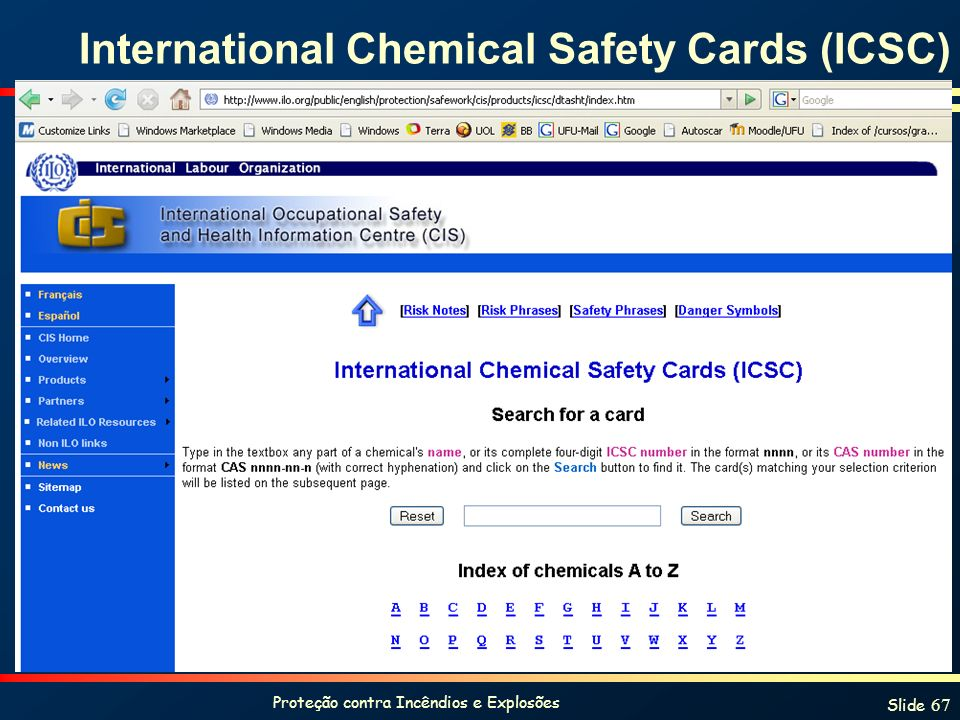 International Chemical Safety Cards (ICSC)