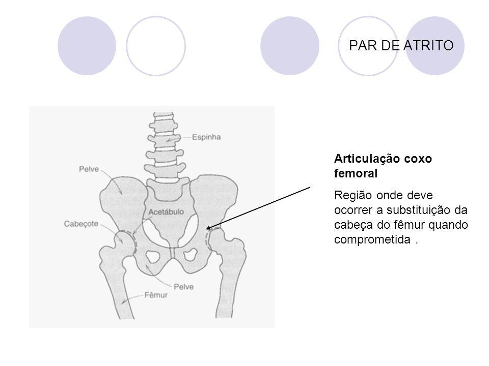 PAR DE ATRITO Articulação coxo femoral