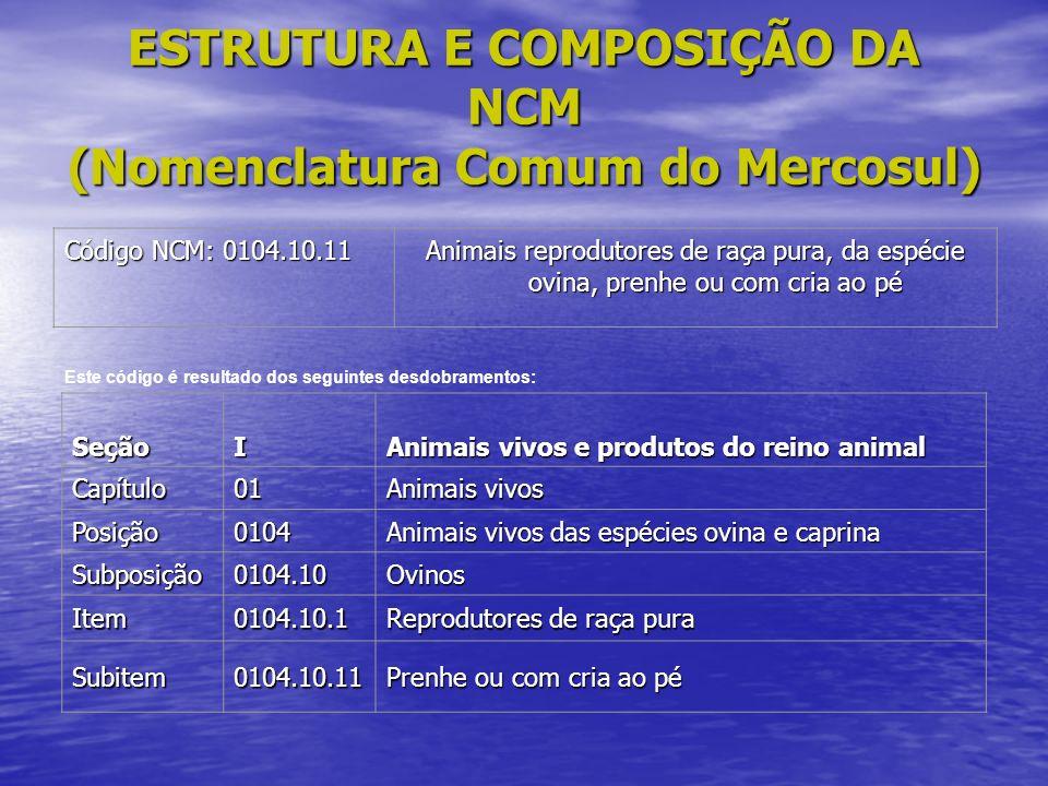 ESTRUTURA E COMPOSIÇÃO DA NCM (Nomenclatura Comum do Mercosul)