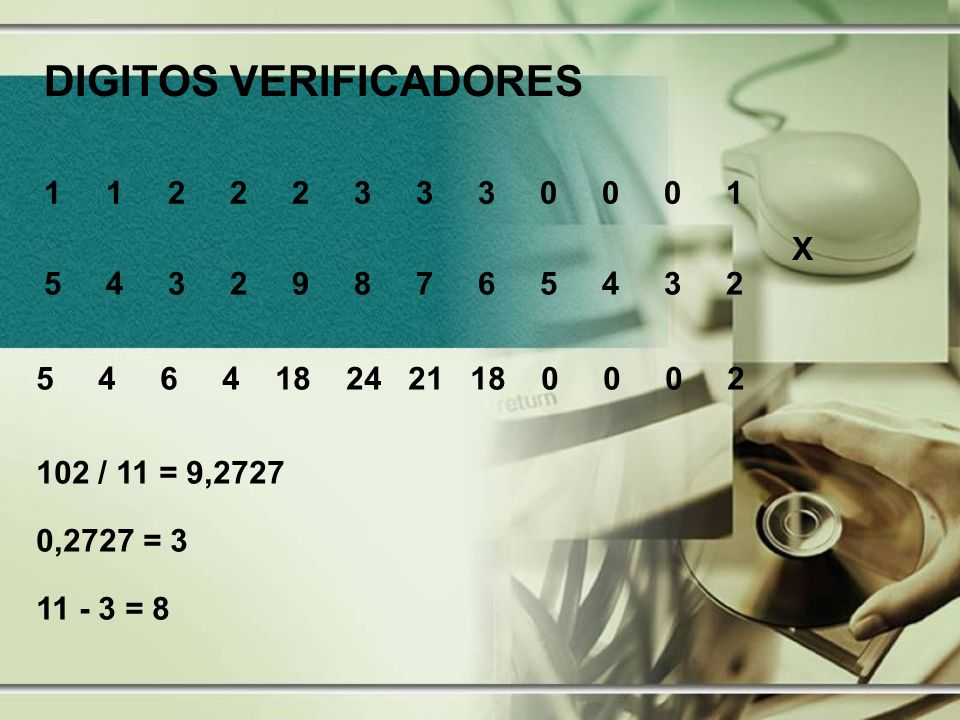 DIGITOS VERIFICADORES