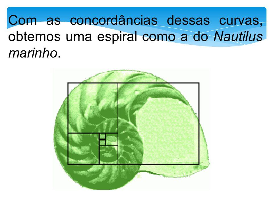 Com as concordâncias dessas curvas, obtemos uma espiral como a do Nautilus marinho.