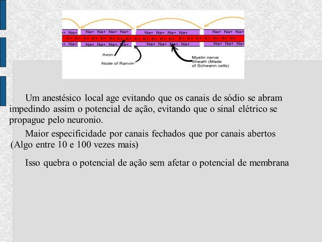 Um anestésico local age evitando que os canais de sódio se abram impedindo assim o potencial de ação, evitando que o sinal elétrico se propague pelo neuronio.