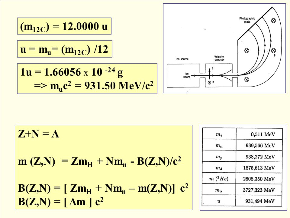 (m12C) = 12.0000 u u = mu= (m12C) /12. 1u = 1.66056 x 10 -24 g. => muc2 = 931.50 MeV/c2. Z+N = A.