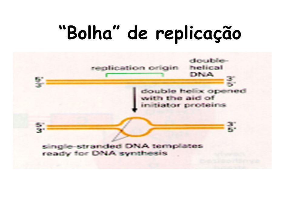 Bolha de replicação