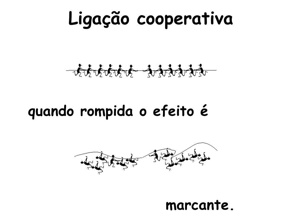 Ligação cooperativa quando rompida o efeito é marcante.