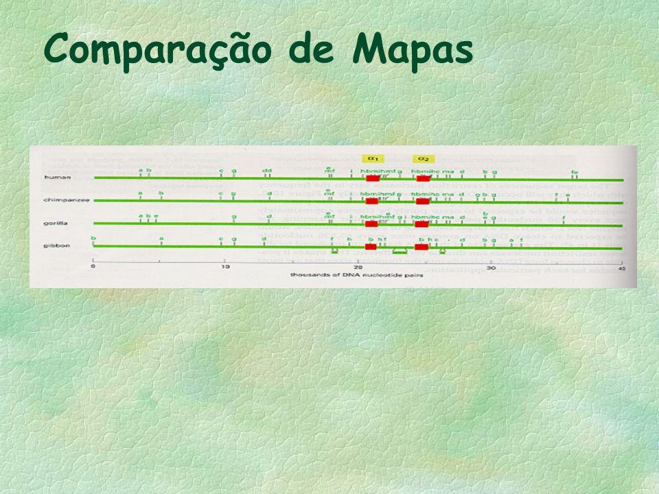 Comparação de Mapas