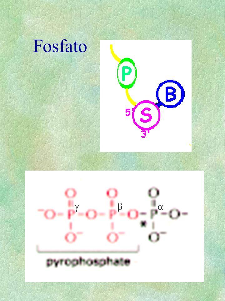 Fosfato a b g