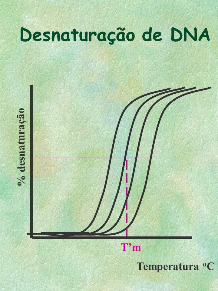 Desnaturação de DNA % desnaturação Temperatura oC T'm