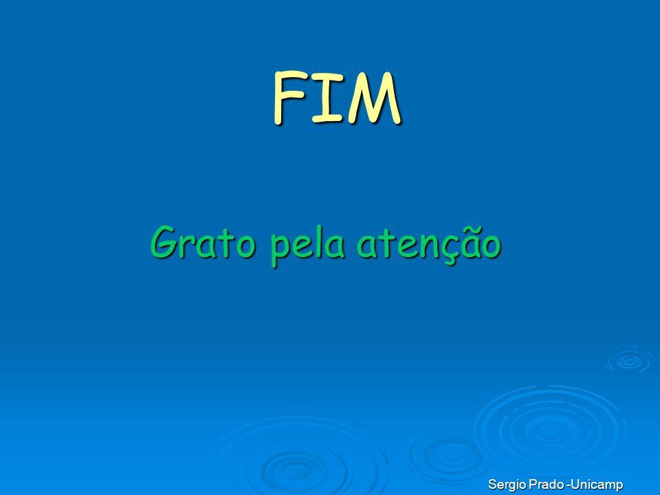 FIM Grato pela atenção Sergio Prado -Unicamp