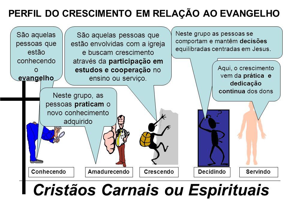 PERFIL DO CRESCIMENTO EM RELAÇÃO AO EVANGELHO