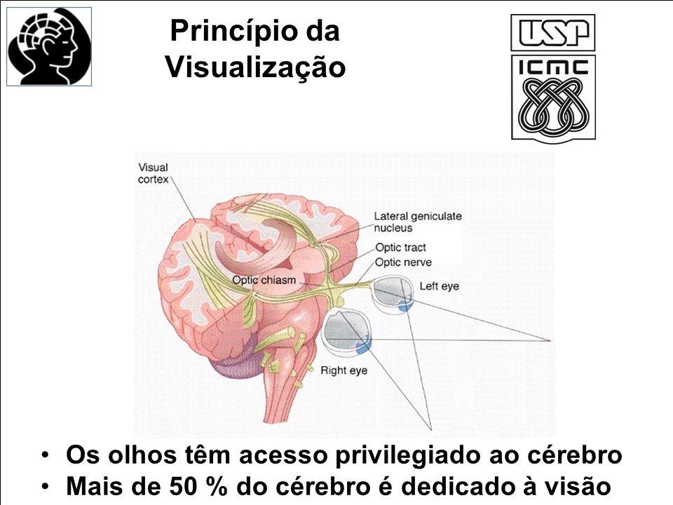 Princípio da Visualização