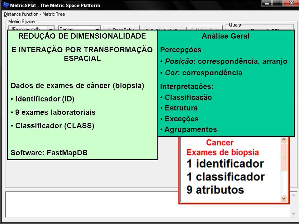 REDUÇÃO DE DIMENSIONALIDADE E INTERAÇÃO POR TRANSFORMAÇÃO ESPACIAL