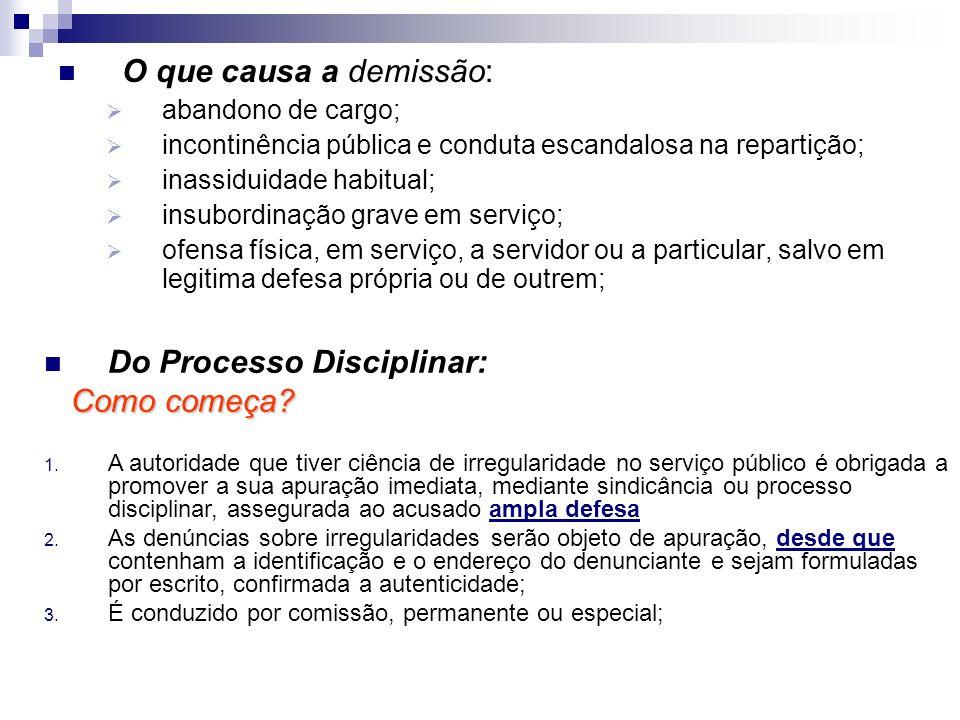 Do Processo Disciplinar: