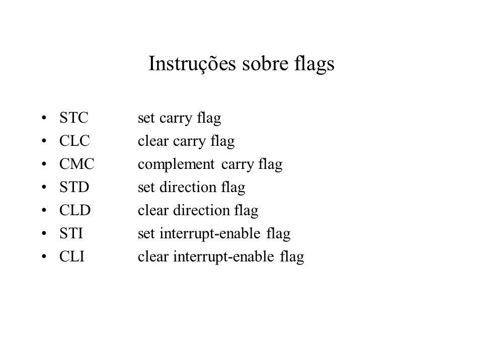 Instruções sobre flags