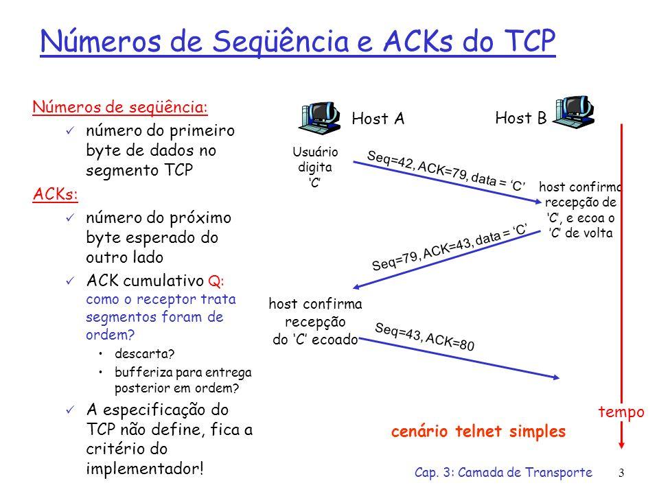 Números de Seqüência e ACKs do TCP