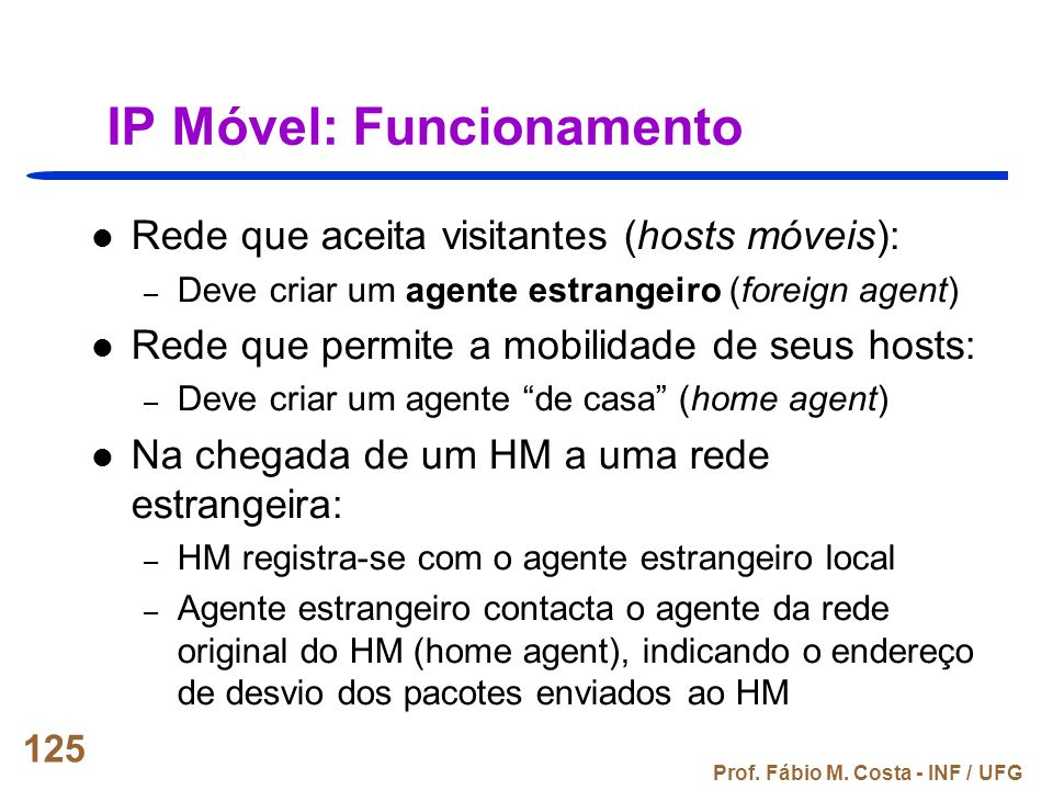 IP Móvel: Funcionamento