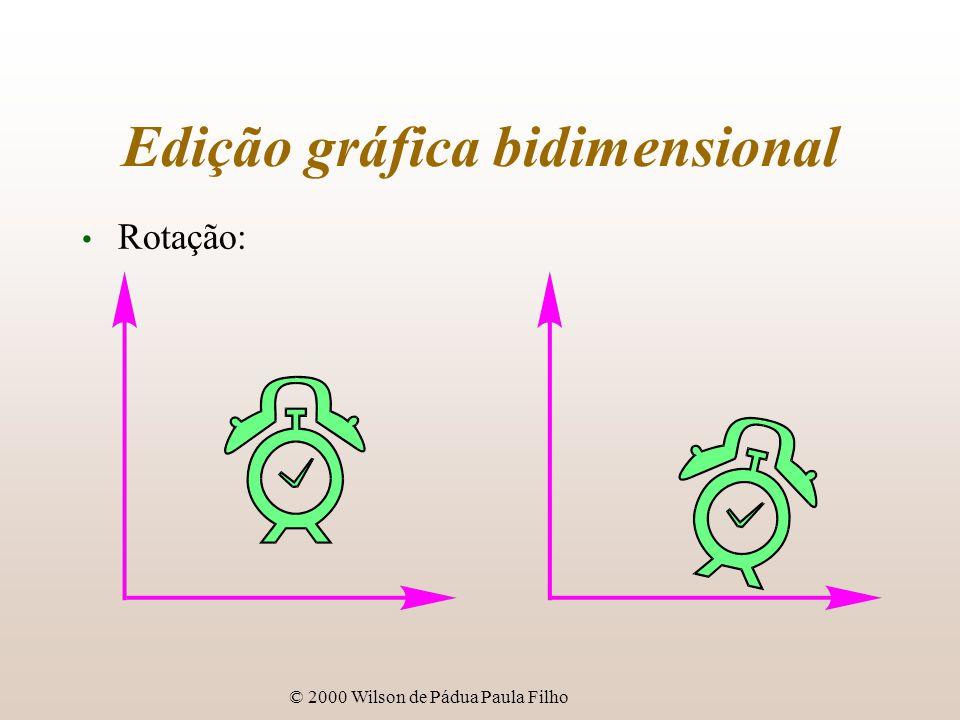 Edição gráfica bidimensional