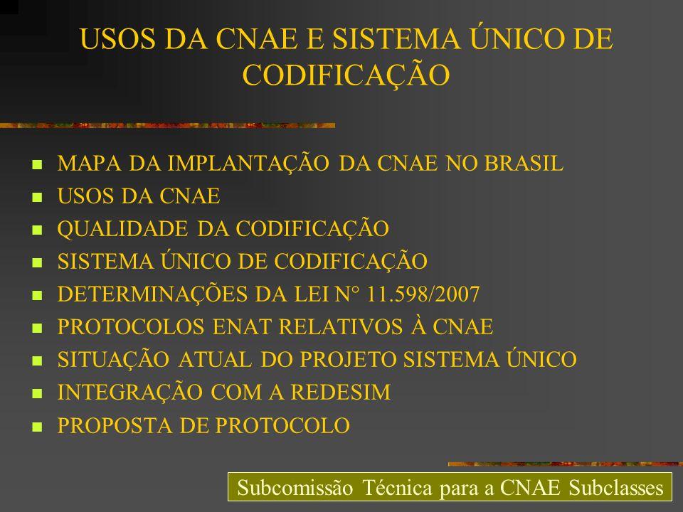 USOS DA CNAE E SISTEMA ÚNICO DE CODIFICAÇÃO