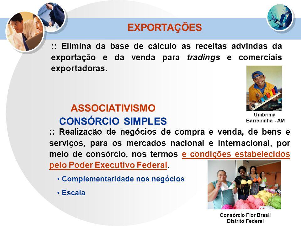 EXPORTAÇÕES ASSOCIATIVISMO CONSÓRCIO SIMPLES