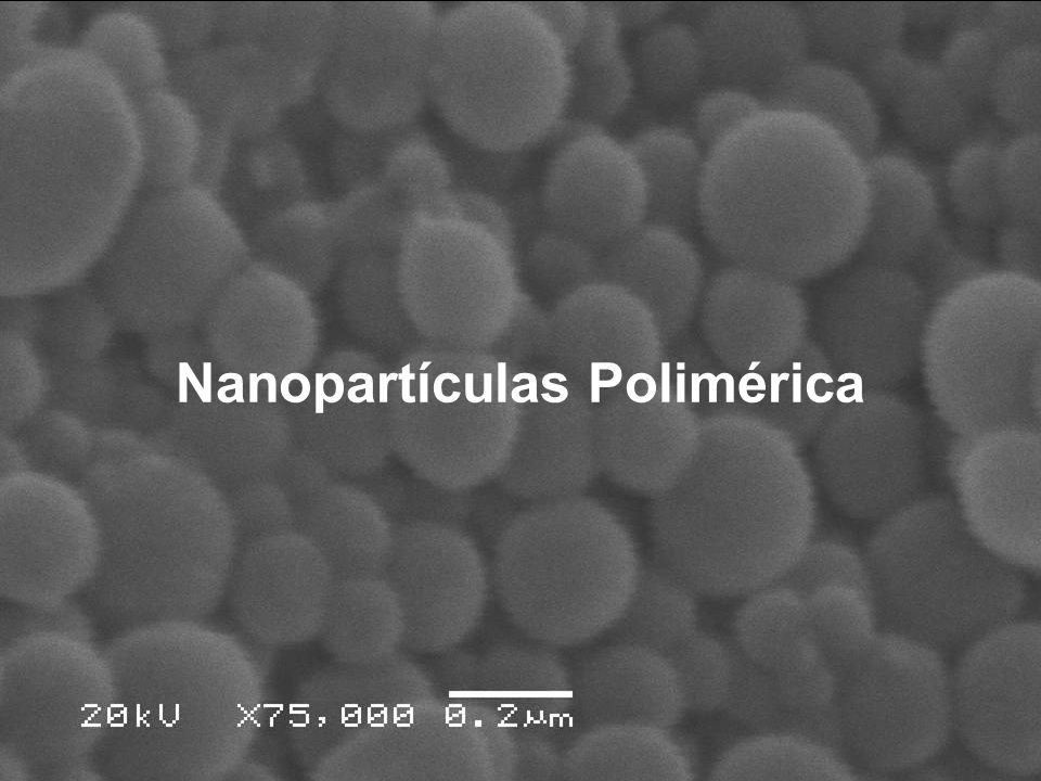 Nanopartículas Polimérica