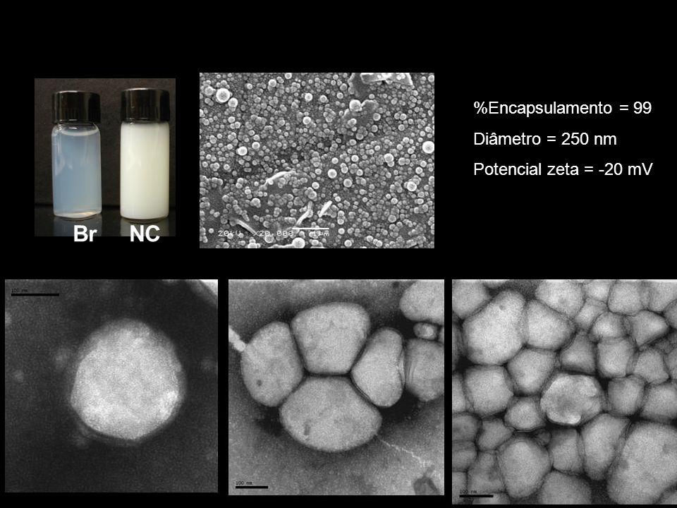 Br NC %Encapsulamento = 99 Diâmetro = 250 nm Potencial zeta = -20 mV
