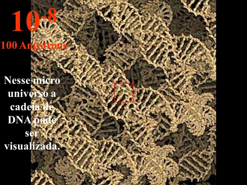 Nesse micro universo a cadeia de DNA pode ser visualizada.