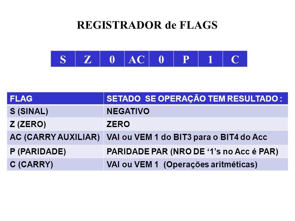 REGISTRADOR de FLAGS S Z AC P 1 C FLAG