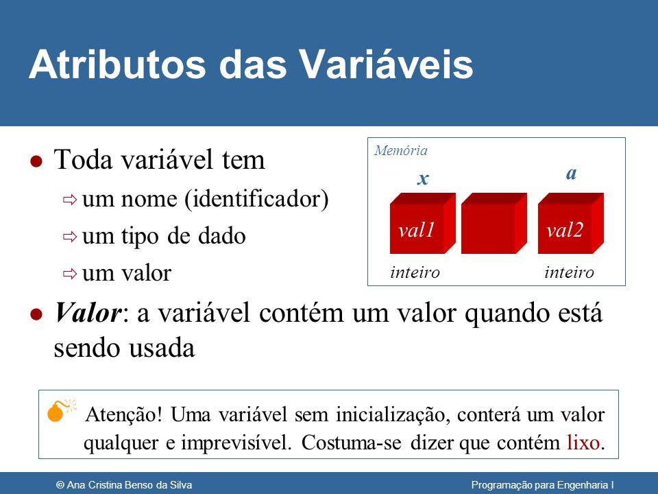 Atributos das Variáveis