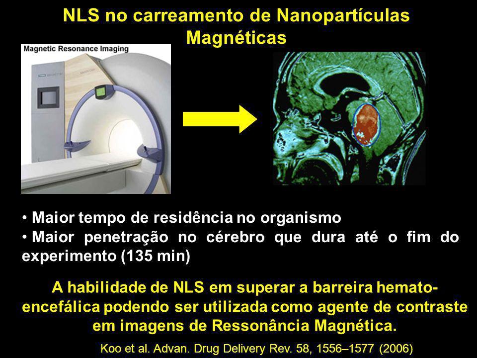 NLS no carreamento de Nanopartículas Magnéticas