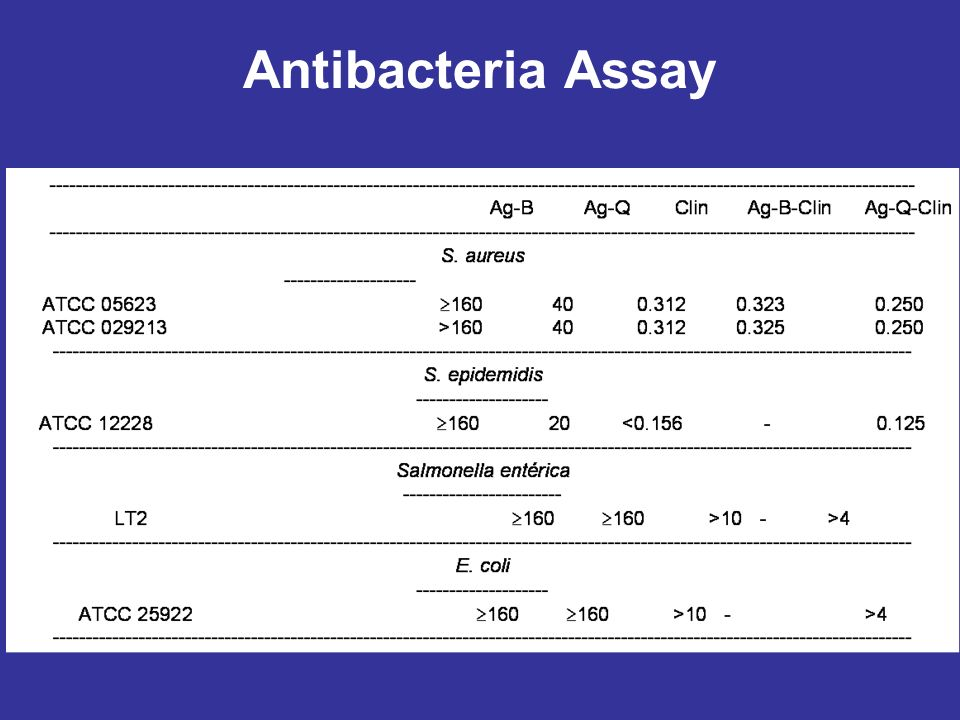 Antibacteria Assay