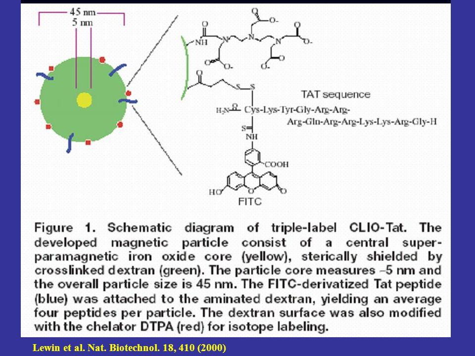 Lewin et al. Nat. Biotechnol. 18, 410 (2000)