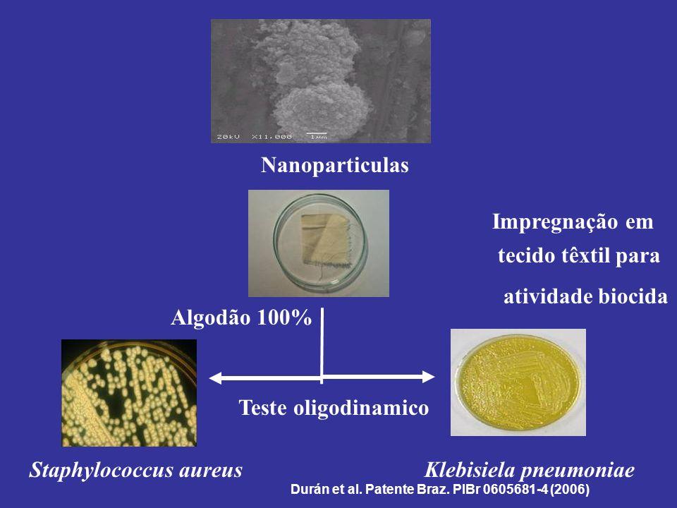 Staphylococcus aureus Klebisiela pneumoniae