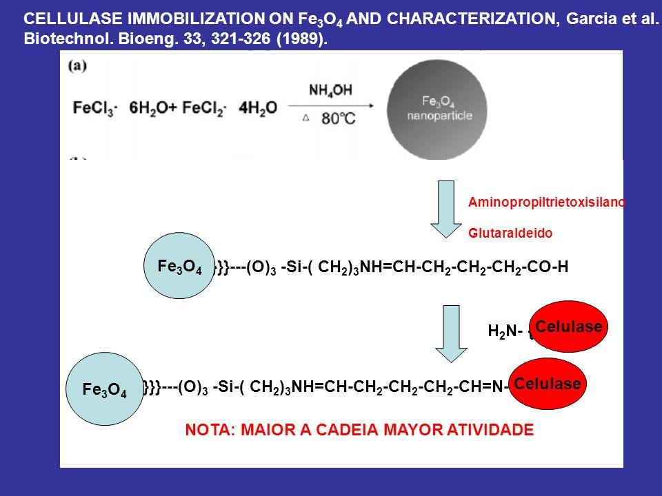 Fe3O4 Celulase Fe3O4 Celulase