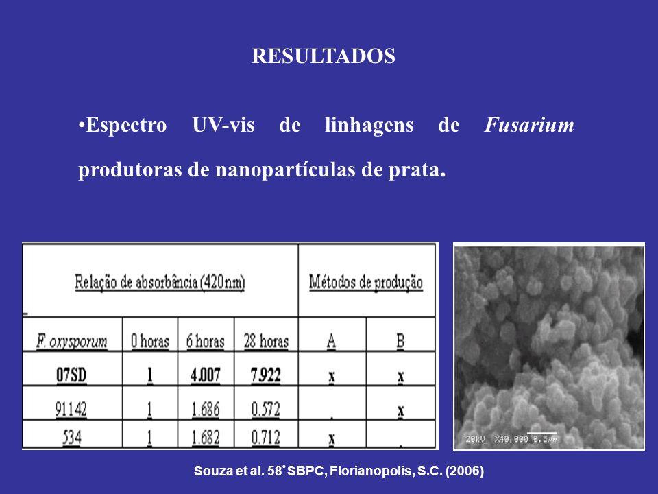 RESULTADOS Espectro UV-vis de linhagens de Fusarium produtoras de nanopartículas de prata.