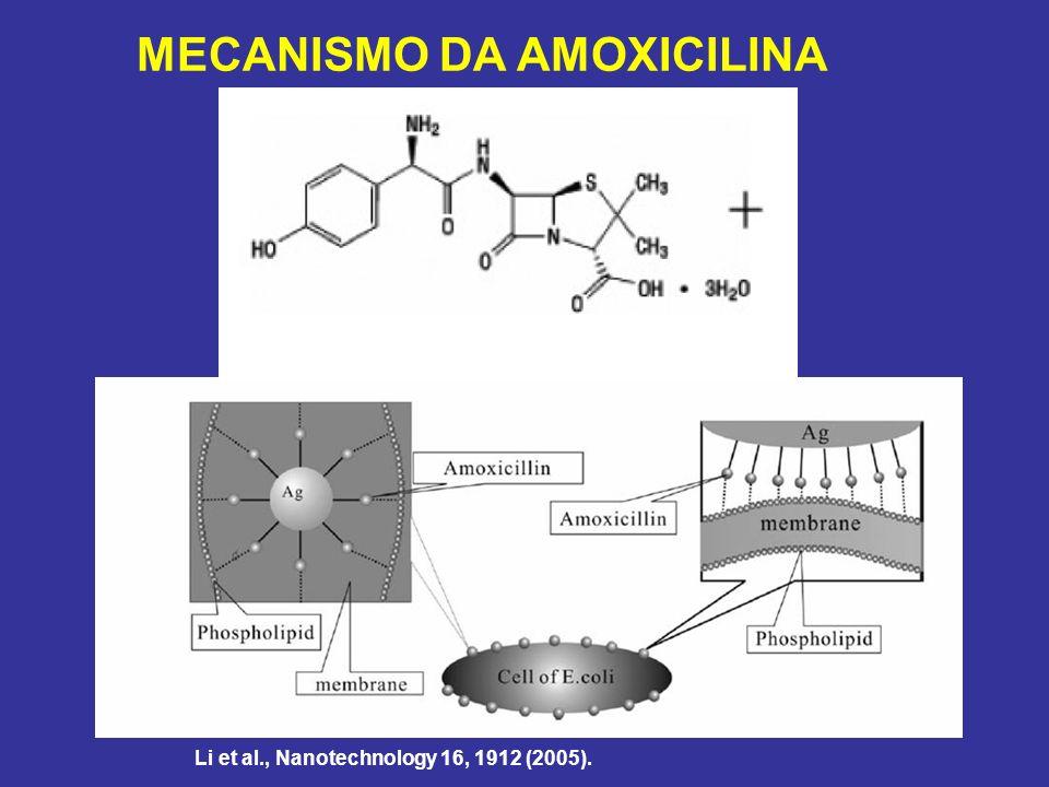 MECANISMO DA AMOXICILINA