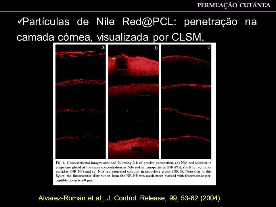 PERMEAÇÃO CUTÂNEA Partículas de Nile Red@PCL: penetração na camada córnea, visualizada por CLSM.