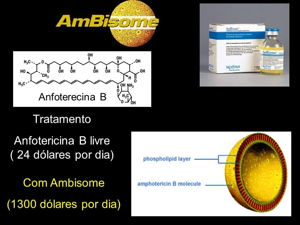 Tratamento Anfotericina B livre ( 24 dólares por dia) Com Ambisome
