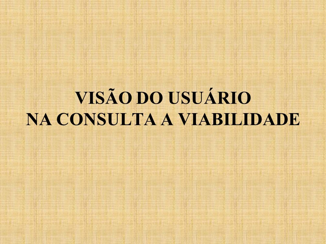 VISÃO DO USUÁRIO NA CONSULTA A VIABILIDADE