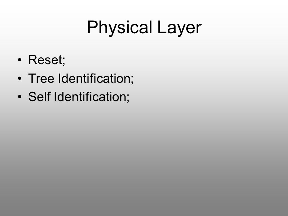 Physical Layer Reset; Tree Identification; Self Identification;