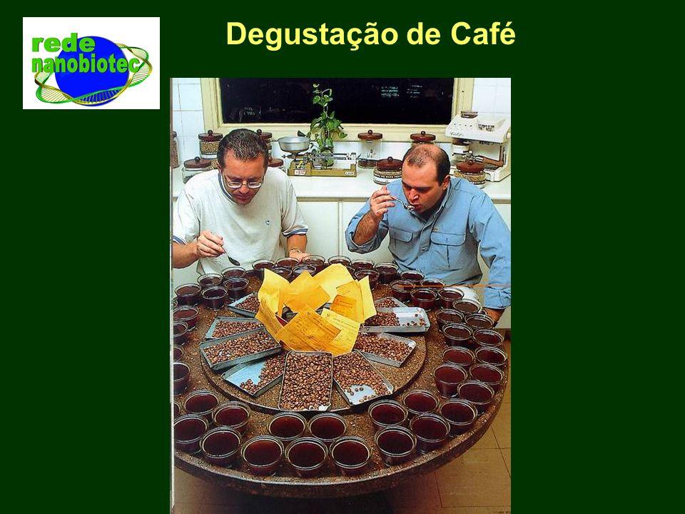 Degustação de Café