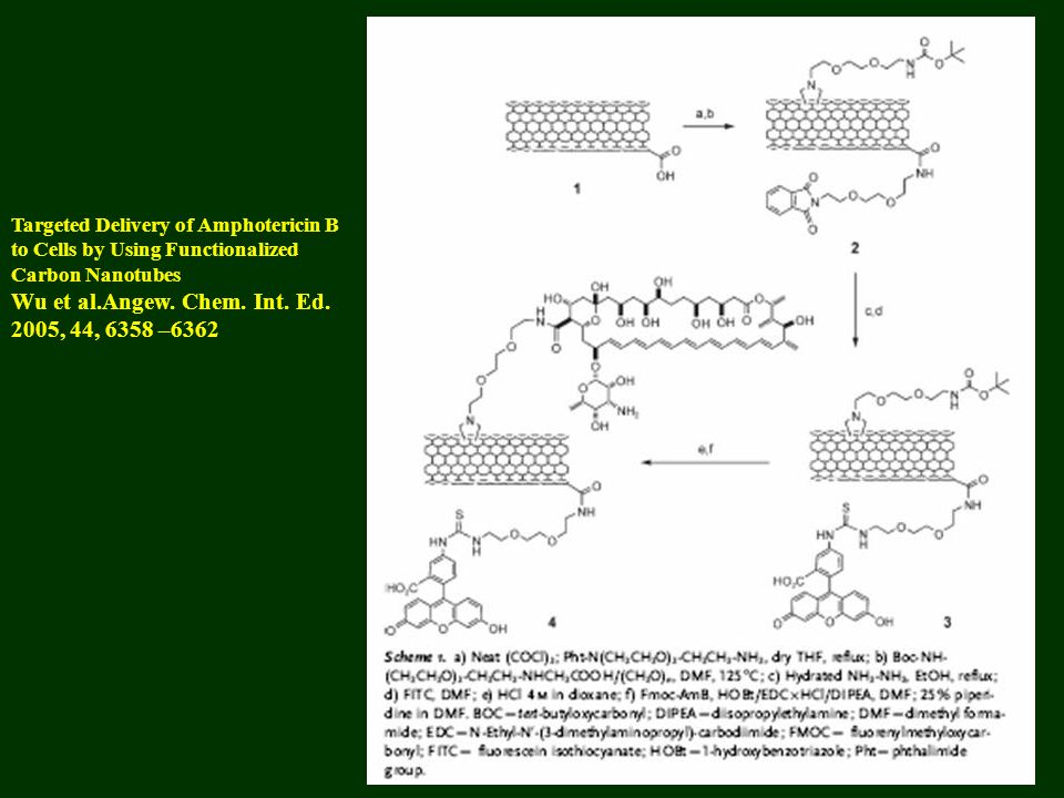 Wu et al.Angew. Chem. Int. Ed. 2005, 44, 6358 –6362