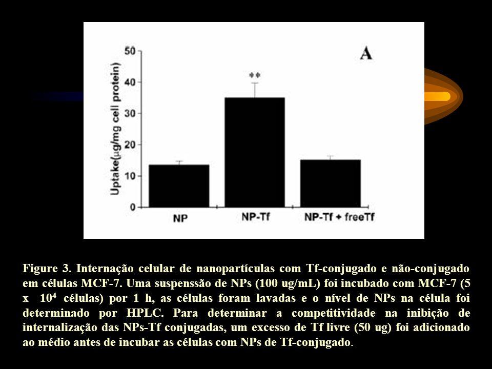 Figure 3. Internação celular de nanopartículas com Tf-conjugado e não-conjugado em células MCF-7.