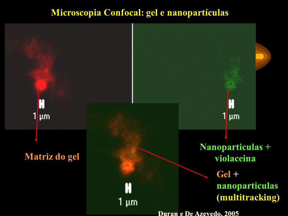Nanoparticulas + violaceina